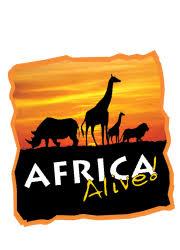 Volunteer   Africa Alive!